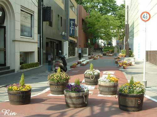 キャットストリート-花壇.jpg