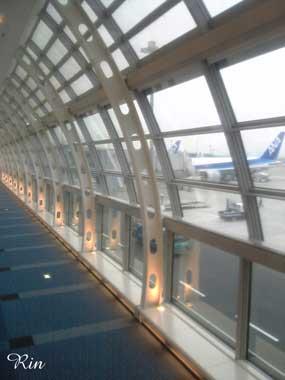 羽田第2ターミナル5.jpg