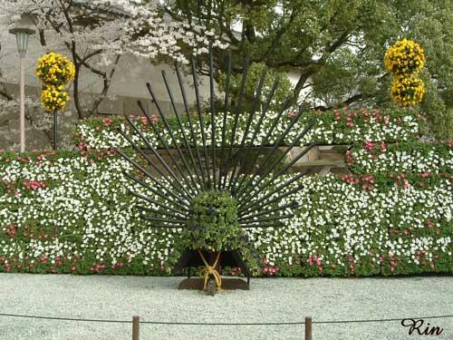 大阪城にて、兜と花.jpg